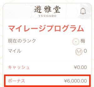 遊雅堂の入金不要ボーナス(6000円)が残高に自動反映